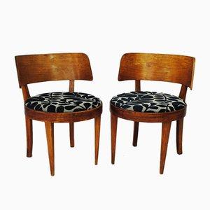 Mid-Century Stühle, 1950er, 2er Set