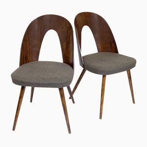 Czech Chairs by Antonín Šuman for Thonet, 1960s, Set of 2