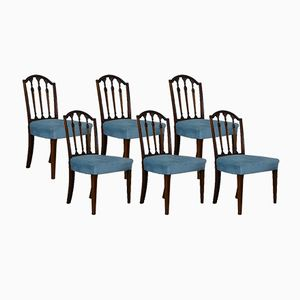 Antique Mahogany Dining Chairs, Set of 6