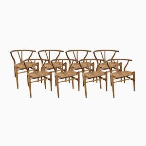 CH24-Y Wishbone Stühle von Hans Wegner für Carl Hansen & Søn, 1950er, 8er Set