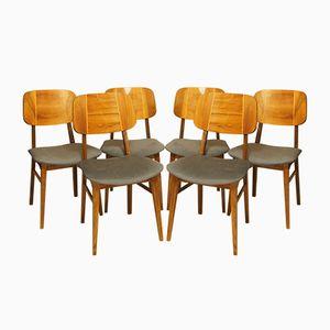 Romanian Bilea Chairs, 1960s, Set of 6