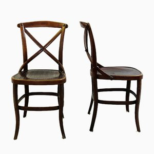 Antique Chairs By Jacob Josef Kohn For Thonet