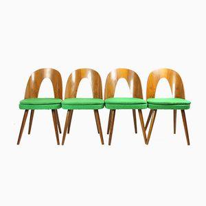 Vintage Dining Chairs by Antonín ŠUman for Tatra, 1960s, Set of 4