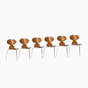 Danish Ant Chairs in Rosewood by Arne Jacobsen for Fritz Hansen, Set of 6