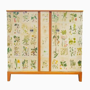 Swedish Wooden Cabinet with Nordern Flora Illustrations by C.A. Lindman, 1960s