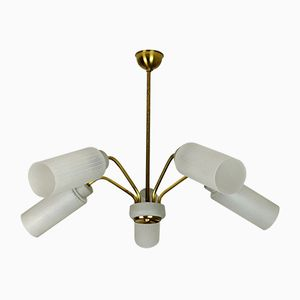 Spider Ceiling Lamp in Brass and Glass, 1950s