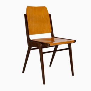 Forum Stadtpark Chair by Franz Schuster for Wiesner-Hager, 1959