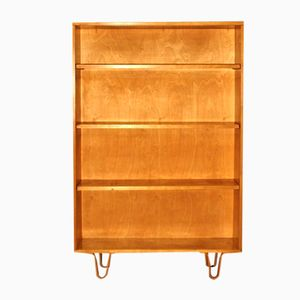 Dutch BB02 Bookcase by Cees Braakman for UMS Pastoe, 1950s