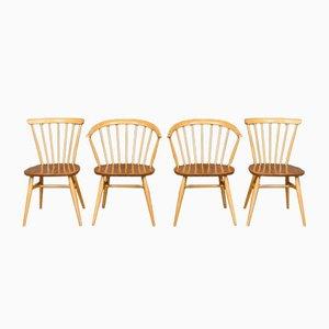 Esszimmerstühle von Lucian Ercolani für Ercol, 1960er, 4er Set