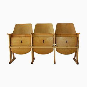 3 sedili da cinema vintage di TON (Thonet), anni '60