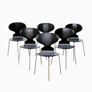 Chaises Ant Modèle FH 3100 par Arne Jacobsen pour Fritz Hansen, 1969, Set de 6