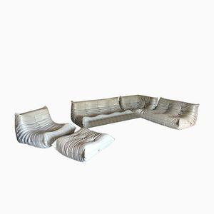 Light Grey Leather Togo Sofa Set by Michel Ducaroy for Ligne Roset, 1970s, Set of 5