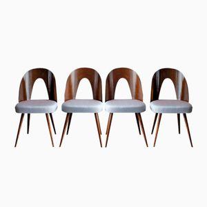 Vintage Czechoslovakian Dining Chairs by Antonín Šuman for Tatra, 1960s, Set of 4