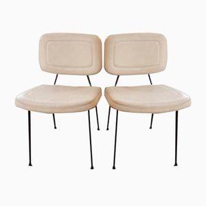 Modell CM196 Stühle von Pierre Paulin für Thonet, 1950er, 2er Set