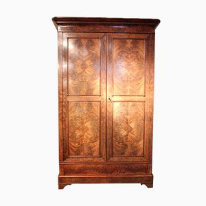 French Mahogany Louis Philippe Lawyers Bookcase or Cupboard, 19th Century