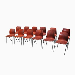 Mid-Century Side Chairs from Pagholz Flötotto, 1950s, Set of 12