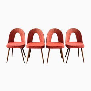 Vintage Chairs from Antonín Šuman for Tatry, 1960s, Set of 4