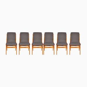 Esszimmerstühle aus Buche, 6er Set