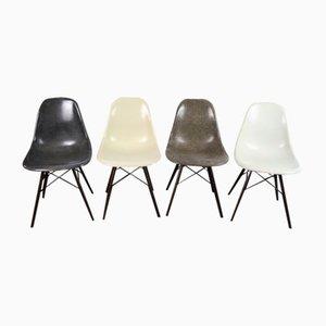 Farbige Vintage DSW Glasfaser Beistellstühle von Charles & Ray Eames für Herman Miller, 4er Set