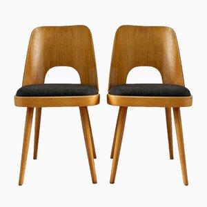 Tschechische Schichtholz Stühle von Oswald Haerdtl für TON, 1950er, 2er Set