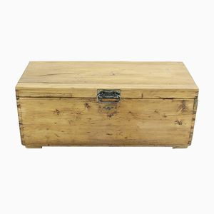 Antique Trunk in Spruce, 1900s