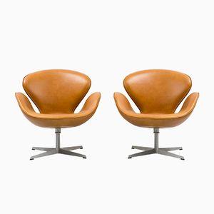 Chaises Swan par Arne Jacobsen pour Fritz Hansen, 1950s, Set de 2