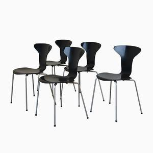 No. 3105 Esszimmerstühle von Arne Jacobsen für Fritz Hansen, 1950er, 5er Set