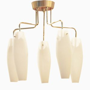 Italian Low Ceiling Lamp with 5 Glass Drop-Down Shades, 1950s