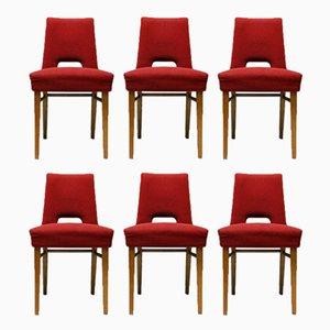 Esszimmerstühle von Ernst Max Jahn für VEB Deutsche Werkstätten Hellerau, 1958, 6er Set
