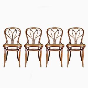 Antike No. 25 Stühle von Michael Thonet für Gebrüder Thonet, 4er Set