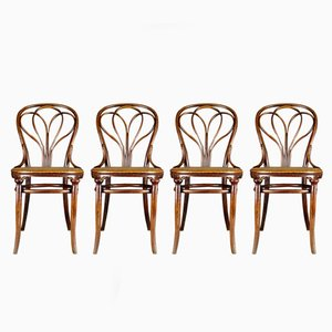 25 chairs by michael thonet for gebrder thonet set of 4