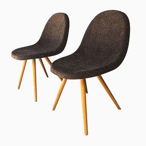 Braune Stühle, 1950er, 2er Set