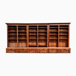Antique Victorian Library Bookcase in Golden Oak, 1860s