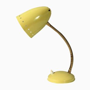 Vintage Desk Lamp from Hala Zeist, 1950s