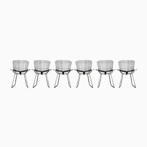 Mid-Century Side Chairs by Harry Bertoia for Knoll, Set of 6