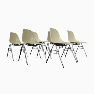 Mid-Century DSS Fiberglass Shell Chairs by Charles & Ray Eames for Herman Miller, Set of 6
