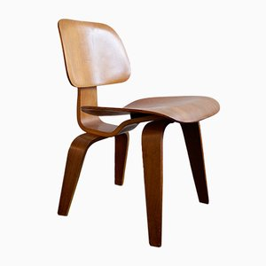 Plywood DCW Chair by Charles & Ray Eames for Evans