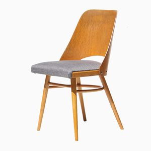 Mid-Century Czech Gray Dining Chairs, 1960s, Set of 4