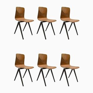 Dutch Industrial S22 Thur-op School Chairs from Pagholz Flötotto, 1967, Set of 6