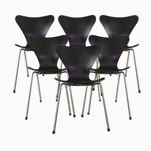 Sedie modello 3107 Mid-Century nere di Arne Jacobsen per Fritz Hansen, Danimarca, set di 6