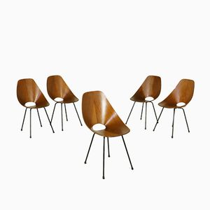 Medea Chairs by Vittorio Nobili for F.lli Tagliabue, 1950s, Set of 5