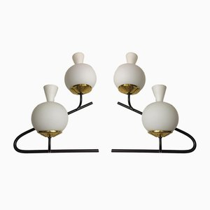 Large Wall Lamps from Stilnovo, 1950s, Set of 2