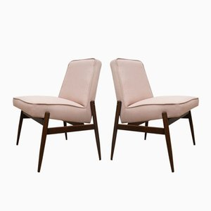Chairs from Zamość Furniture Factory, 1960s, Set of 2