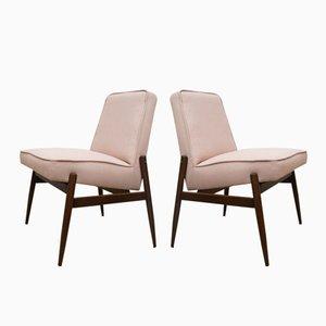 Sessel von Zamość Furniture Factory, 1960er, 2er Set