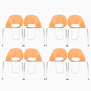 Italian Chairs by Vittorio Nobili for Fratelli Tagliabue, 1950s, Set of 8