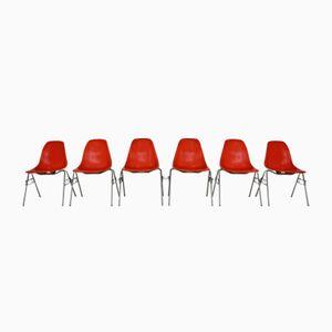 Orange Amerikanische Vintage DSS Shell Stühle von Charles & Ray Eames für Herman Miller, 1965, 6er Set