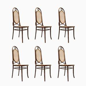 Chaises n°17 par Michael Thonet, France, 1930s, Set de 6