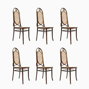 French n°17 Chairs by Michael Thonet, 1930s, Set of 6