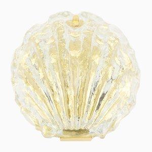 Goldene Muschel Glas Wandlampe von Kalmar, 1960er