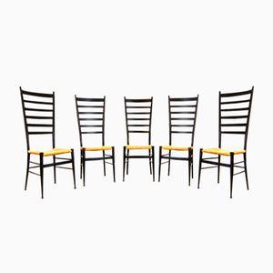 Chaises de Salon Vintage, Set de 5